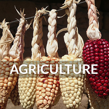 Find Agriculture Museums